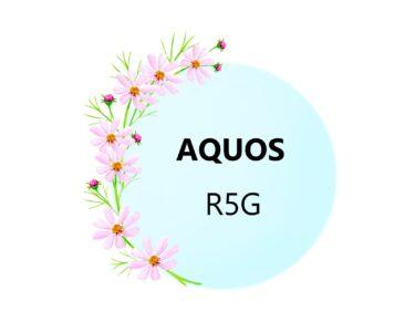 AQUOS R5G  フィルム・ケース 100均にある?
