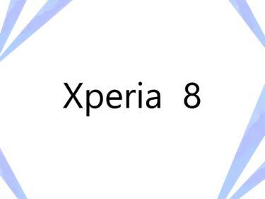 Xperia 8 フィルム  ケース 100均にある? おすすめは?